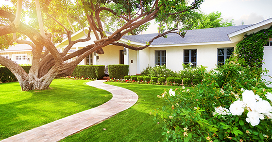 home equity loan tax reform irs